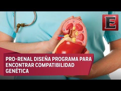 Algoritmo matemático impulsaría trasplantes de riñón en México