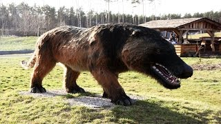 Video 19 Terrifying Animals You're Glad Are Extinct MP3, 3GP, MP4, WEBM, AVI, FLV Juni 2019
