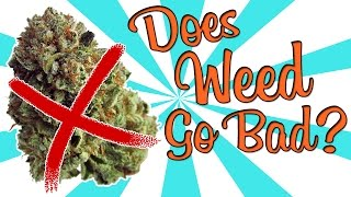 DOES WEED GO BAD??? by Strain Central