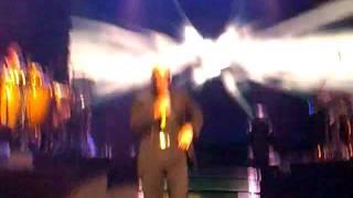 Pitbull Entertainer Entertainment Live Concert Live Music
