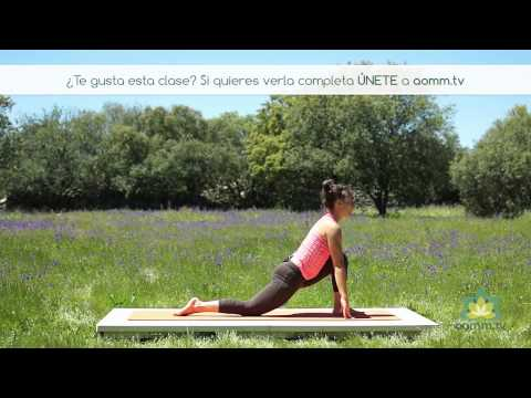 Yoga online – Viaje fluido por la columna