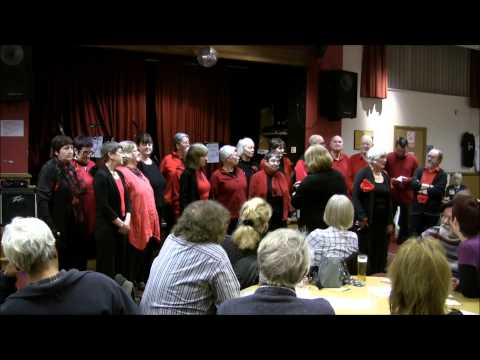 labour movement - Veronica Matthews - a member of the Red Leicester Choir (http://redleicesterchoir.com/) - talks about the songs,