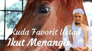 Video Heboh | Kuda Favorit Ustad Arifin Ilham Ikut Menangis Mengetahui Ustad Wafat MP3, 3GP, MP4, WEBM, AVI, FLV September 2019
