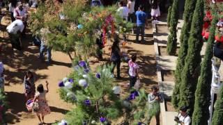 los roseros de San Juan Chilateca