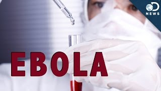 How Does Ebola Kill You?