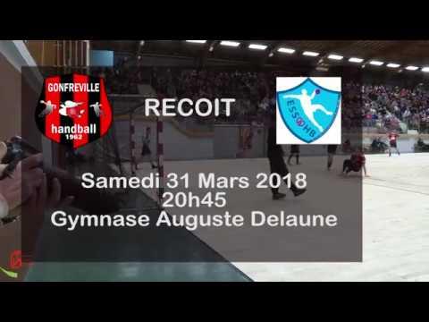 Reportage sur la N1 de Gonfreville Handball
