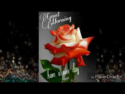 Romantic quotes - Good Morning  whatsapp status /Love Romantic/Status /Quotes/Good Morning Wishes