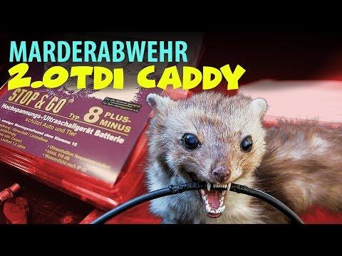Marderschreck Marderabwehrgerät Stop&Go Einbau im Caddy mit Euro 6 - HLC Media