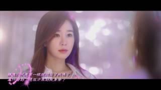 [中字] Soyou (소유) - I Miss You (鬼怪 OST) Video