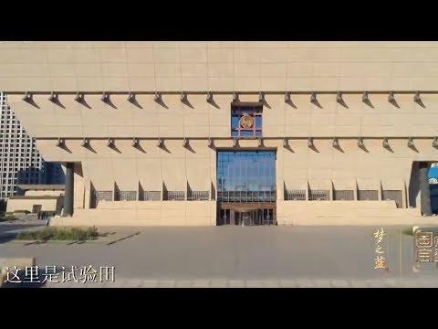National Treasure Season 2: Episode 9| CCTV English