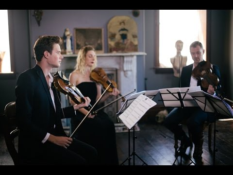 Can't Help Falling In Love By Elvis Presley - Stringspace - String Quartet  Cover