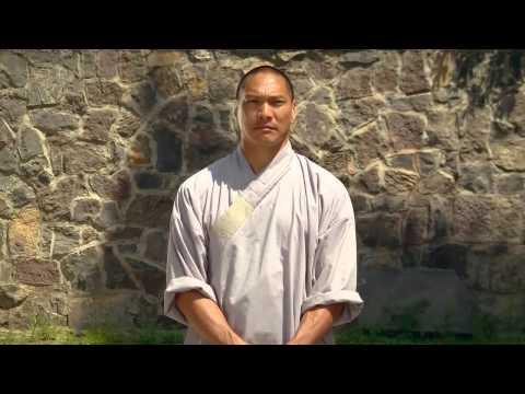 14 day Shaolin Kung Fu discovery (documentary film) (видео)