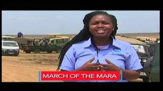 March of Mara - [PROMO] - By Dorcas Wangira