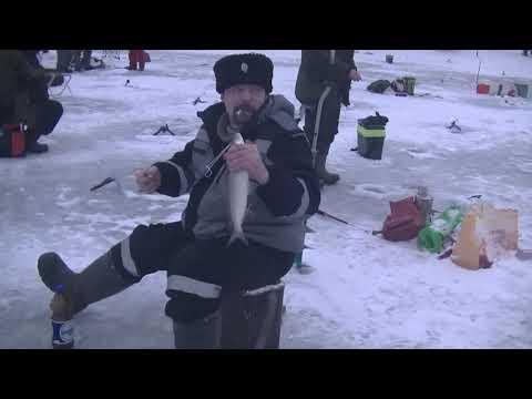 Видео отчет о рыбалке за 2 января 2020