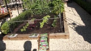 #696 Chelsea Flower Show 2012 - Der kleine Erntekäfig (Elegance crop cage)