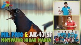 Video BENING PICTURES:  Mr. PRIO Bongkar rahasia OHARA MP3, 3GP, MP4, WEBM, AVI, FLV Desember 2018