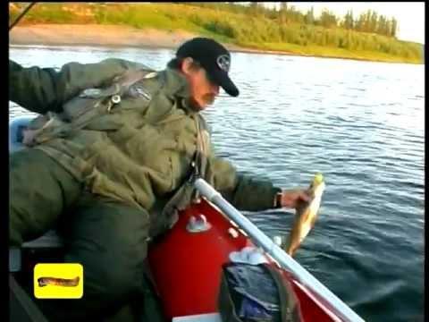 канал охота и рыбалка настройки