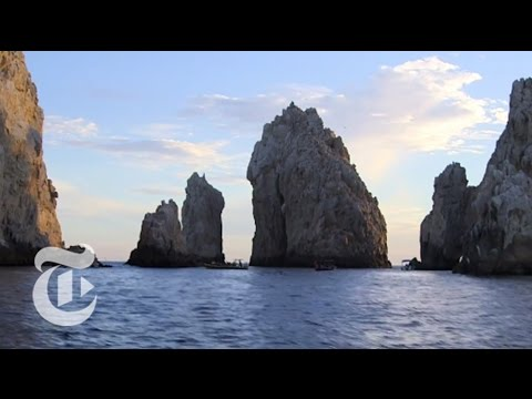 What to Do in Los Cabos, Mexico | 36 Hours Travel Videos | The New York Times