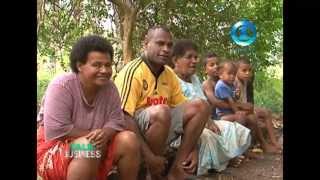 Labasa Fiji  City new picture : VIRGIN COCONUT OIL - LABASA FIJI