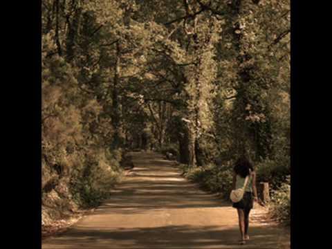 Meu caminho é cada manhã