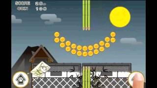Ninja Cat -Flying!!- YouTube video