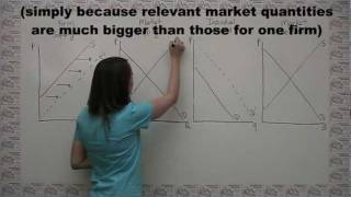 Introduction To Competitive Markets