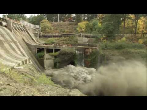 DAM - The Condit dam was breached today, allowing the reservoir behind it, Northwestern Lake, to drain into the White Salmon River. The dam's fall will unleash one...