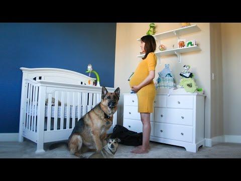 ragazza incinta ferma al centro della stanza: il time lapse è stupendo!