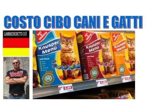 COSTO CIBO PER CANI E GATTI  IN GERMANIA (Scandaloso!!!! )