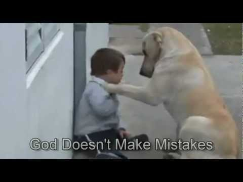 Sweet Mama Dog Interacting with a Beautiful Child with Down Syndrome Jim Stenson