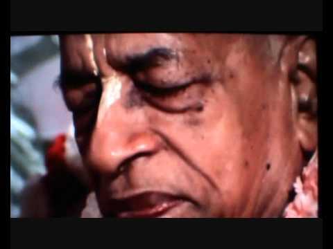 Video Sri Guru Vandana ~ Swarupa Damodara Das download in MP3, 3GP, MP4, WEBM, AVI, FLV January 2017
