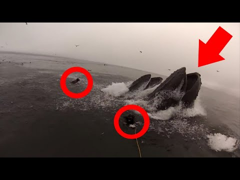 10 Scary Near Misses And Close Calls That Will Turn Your Stomach