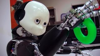 Thumbnail of Teaching Bert: iCub Robot Learns About the World video