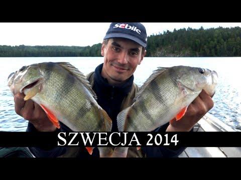 Wędkarstwo spinningowe - Wędkowanie w Szwecji 2014 - Okonie i szczupaki na spinning