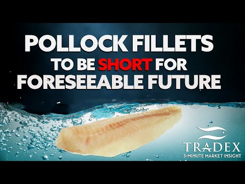 3MMI - Pollock Fillets Short For Foreseeable Future