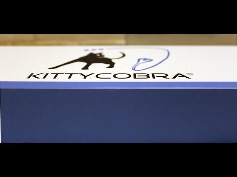 Kittycobra Katzenangel Test