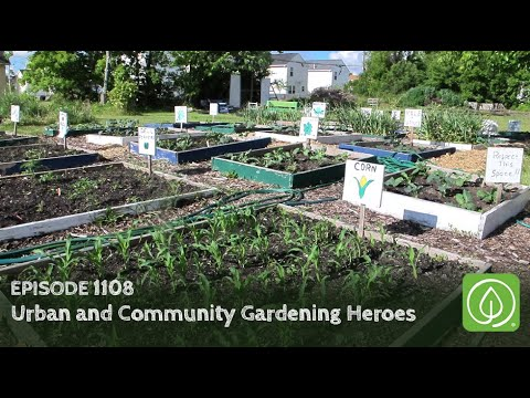 Growing a Greener World Episode 1108: Urban and Community Gardening Heroes
