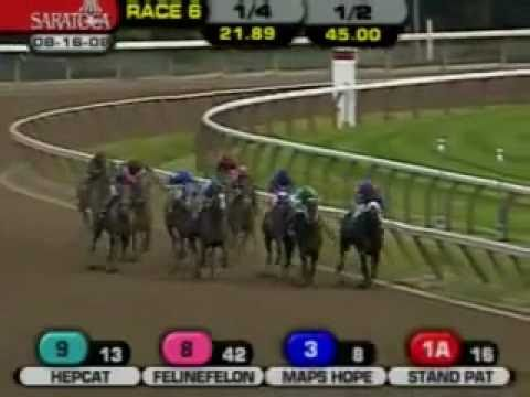 "The owner of a racing horse named his horse ""ARRRRR""."