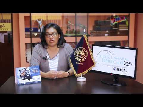 Programa 23 - Tenencia y Ocultamiento de Activos - Luces Cámara Derecho - EGACAL