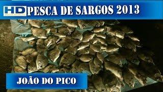 Pesca De Sargos João Do Pico 2013 Grande Pescaria