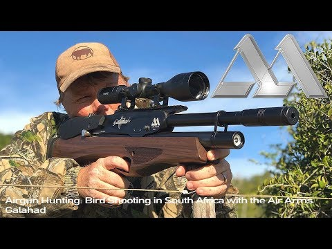 Airgun Hunting: Bird Shooting In South Africa With The Air Arms Galahad