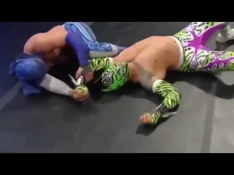 WWE FUNNIEST MISTAKES & BOTCHES