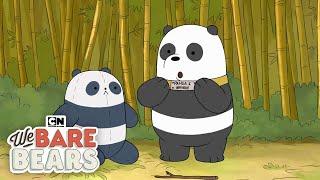 Video We Bare Bears Origin Stories | Cartoon Network MP3, 3GP, MP4, WEBM, AVI, FLV Juli 2019