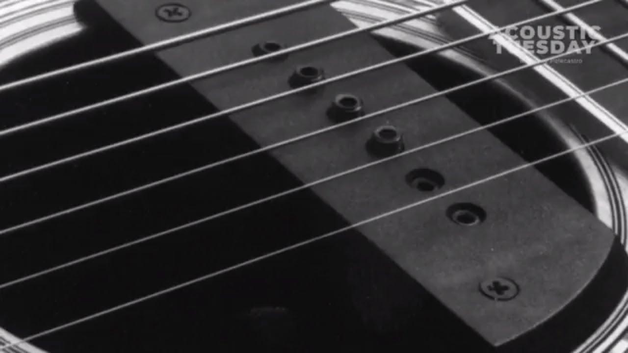 Acoustic Guitar Pickup Buyer's Guide