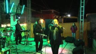 Dama de noche  Rayito Colombiano