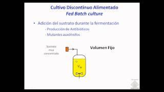 Umh1399 2012-13 Lec002-5 Otros Sistemas De Crecimiento Microbiano