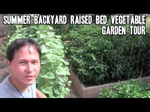 The Best Advice On Growing A Great Organic Raised Bed Garden