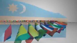 Flag E3D