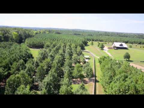 750 acres Sweet Water, AL