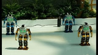 Dancing  Mini Robots , 케이팝 춤추는 미니 로봇